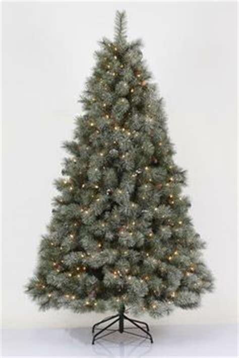 7 5 pre lit philips remains lit balsam fir tree clear