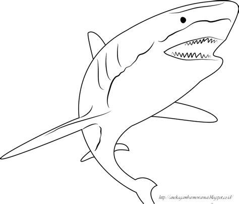 gambar mewarnai ikan hiu untuk anak paud dan tk