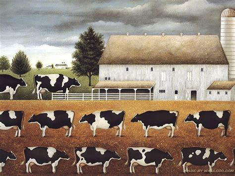 Farm Animal Wallpaper For Kitchen - cow wallpaper for kitchen gallery