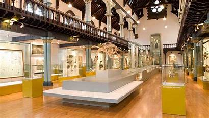 Hunterian Museum Glasgow Museums University Events Agency