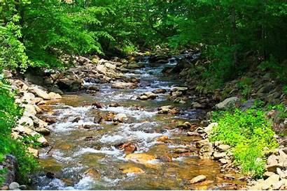 Summer Scenes Scene Desktop Wallpapers Computer Creek