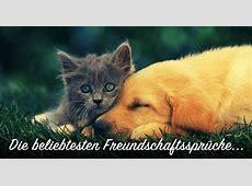 ᐅ Beliebte Freundschaftssprüche Sprüche zum Thema