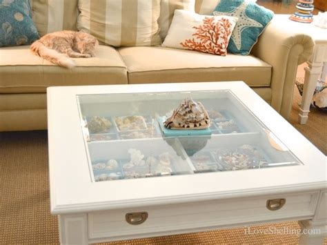 seashell display table ideas i love shelling