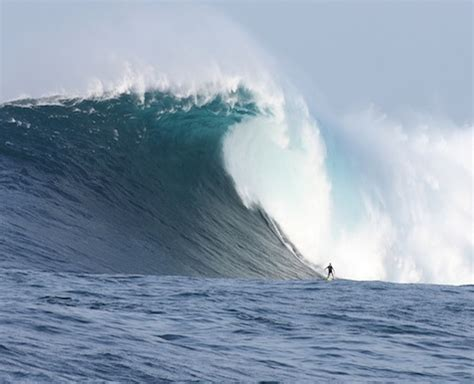 Cortes Bank: the Largest Wave on the Planet – Dr Abalone
