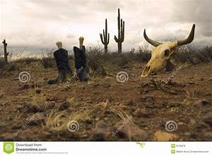 Desert Boots And Skull Royalty Free Stock Photos