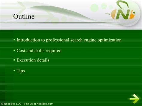 Professional Search Engine Optimization by Professional Search Engine Optimization