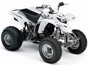 Yamaha Yfs200 1988