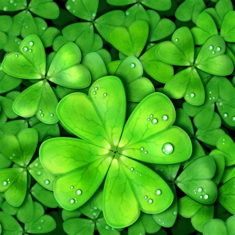 lucky charms  wallpaper  android apk