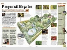 Wildlife Gardening How to Create a Wildlife Friendly Garden
