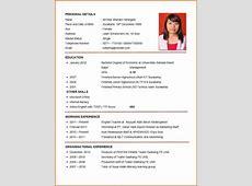 6+ professional curriculum vitae format sample Budget