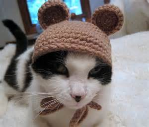 crochet hats for cats crochet cat hat hat pet costume by