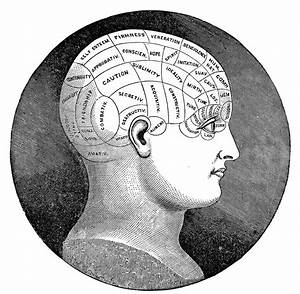 Vintage Clip Art - Antique Phrenology Head