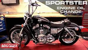Circuit Electric For Guide  2007 Harley 883 Sportster