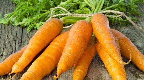 comment cuisiner des carottes carottes comment les planter