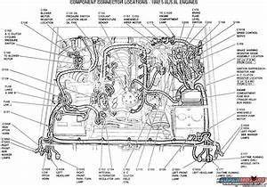 Engine Diagram 5 0 Engine 1989 Town Car In 2020