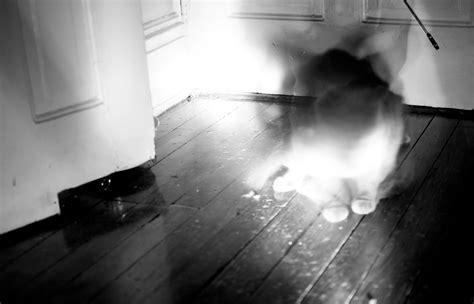 sevgilove ghost cat