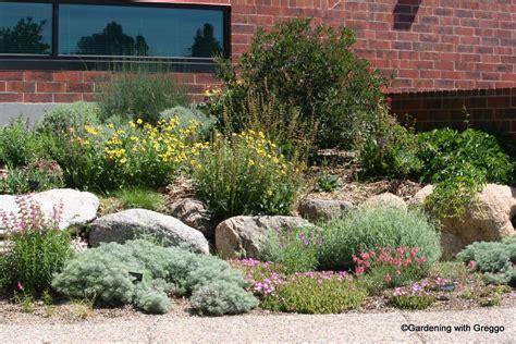 xeriscape landscaping gardening with greggo xeriscape demonstration garden part 1