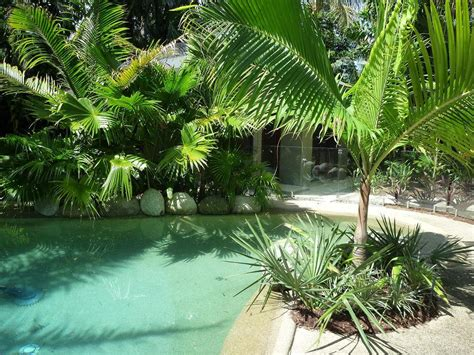 tropical landscapes best tropical landscape design ideas home landscapings