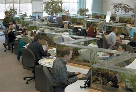 bureau aquarium un bureau aquarium