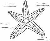 Starfish Coloring Drawing Line Getdrawings Designlooter Drawings 95kb 1005px 1200 Coloring2print sketch template