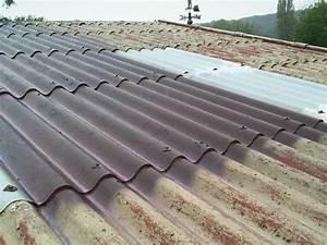 Renovation Toiture Fibro Ciment Amiante : peinture de toiture fibro ciment rev tements modernes du toit ~ Nature-et-papiers.com Idées de Décoration