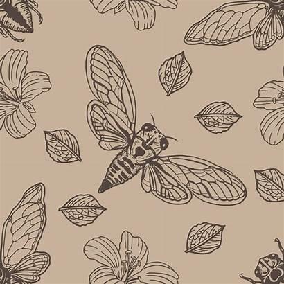 Cicada Vector Hand Drawn Pattern Seamless Patterns
