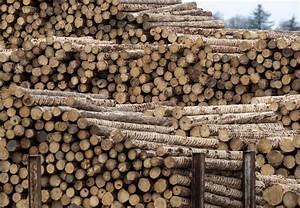 pacific closes oregon mill timber capitalpress