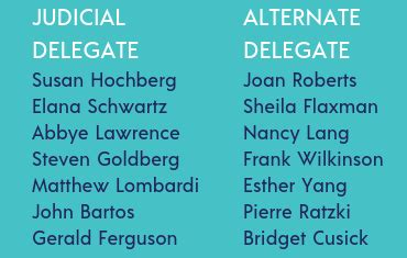 vote   freedoms slate  judicial delegates
