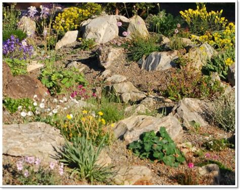 Rock Garden : Beautiful Rock Garden Design Ideas