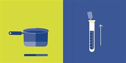 Science Experiments Eat Experiment Scientific Fun Complement