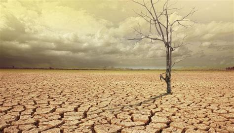 Drought   Latest News on Drought   Read Breaking News on