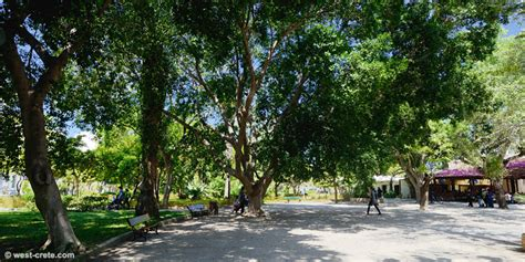 Municipal Gardens by The Municipal Garden Of Chania