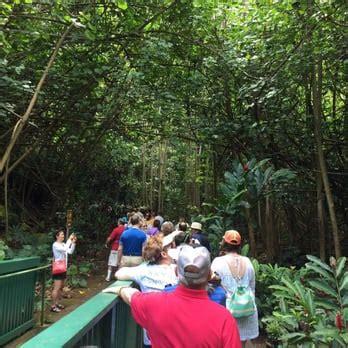 Fern Grotto Kauai Boat Tours by Smith S Fern Grotto Tour 171 Photos 78 Reviews Tours