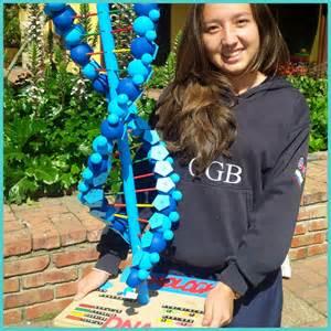 3D DNA Model Project