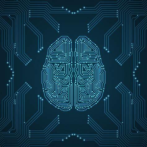 brain research heads   level ai territory