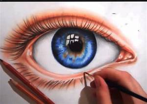 Anatomy Of The Eye  Complete Guide Of Eye Parts
