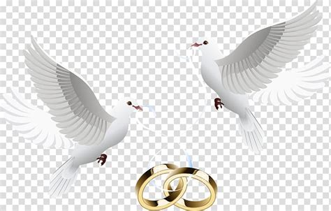 Wedding invitation Dove inlay ring two white doves