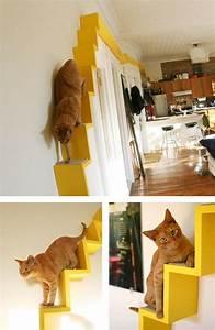 More For Cats Kratzbaum : 27 best images about animal furniture on pinterest cats cat hammock and dog beds ~ Whattoseeinmadrid.com Haus und Dekorationen