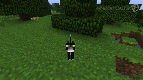 minecraft cat mobs wolves cats ocelot tame mob tamed pet fish version ocelots feed pets into fire turn them minecraft101