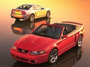 Flashback Friday: Mustang Terminator Edition - Moto Networks