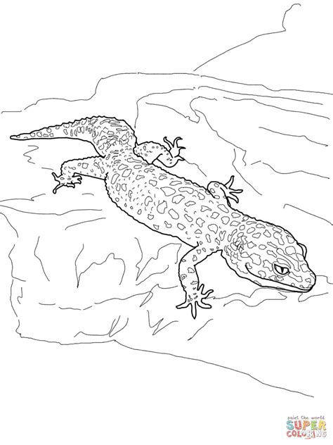 cartoon gecko coloring pages   print