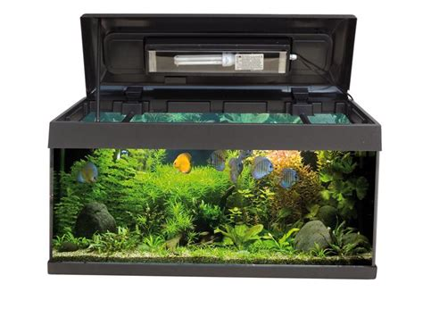 je serai absente du bureau couvercle aquarium 80x30 28 images aquarium blanc