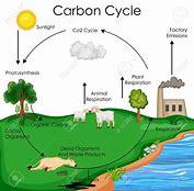 Hd wallpapers carbon cycle diagram gcse wallpaper desktopoxzdd hd wallpapers carbon cycle diagram gcse ccuart Choice Image