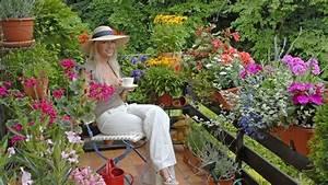 balkonpflanzen blumen und pflanzen fur die balkonkasten With französischer balkon mit sommer garten blumen