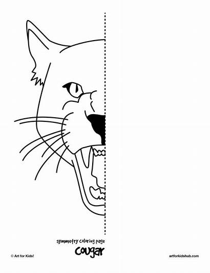Symmetry Worksheets Drawing Coloring Pages Cougar Half