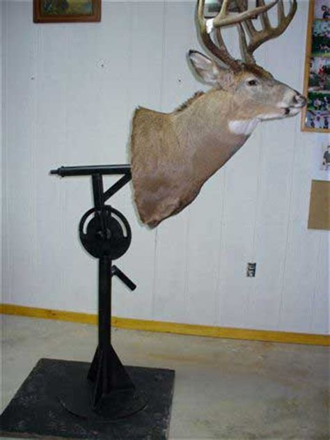 trophy mounting stand  vermont taxidermist bragg