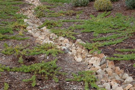 landscaping drainage systems landscape drainage tips french drains santa barbara ventura