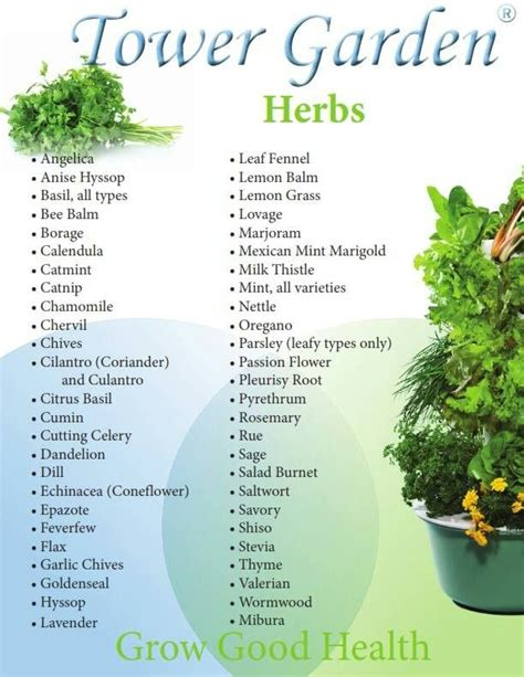 Can You Grow In A Vertical Garden by Herbs You Can Grow In Your Tower Garden Growing Food