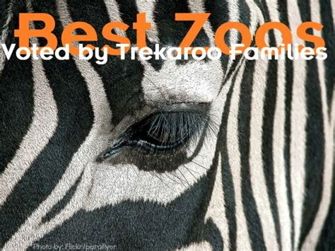 zoos trekaroo states united families voted america zoo shares