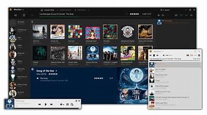 Musicbee Muziekspeler Downloads Jukebox Audio Nederlands Lichte